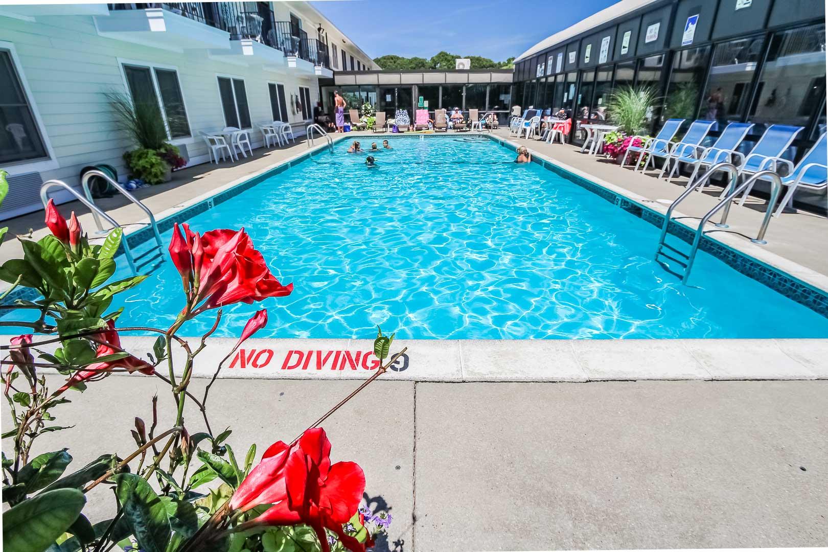 Holly Tree Resort Pool