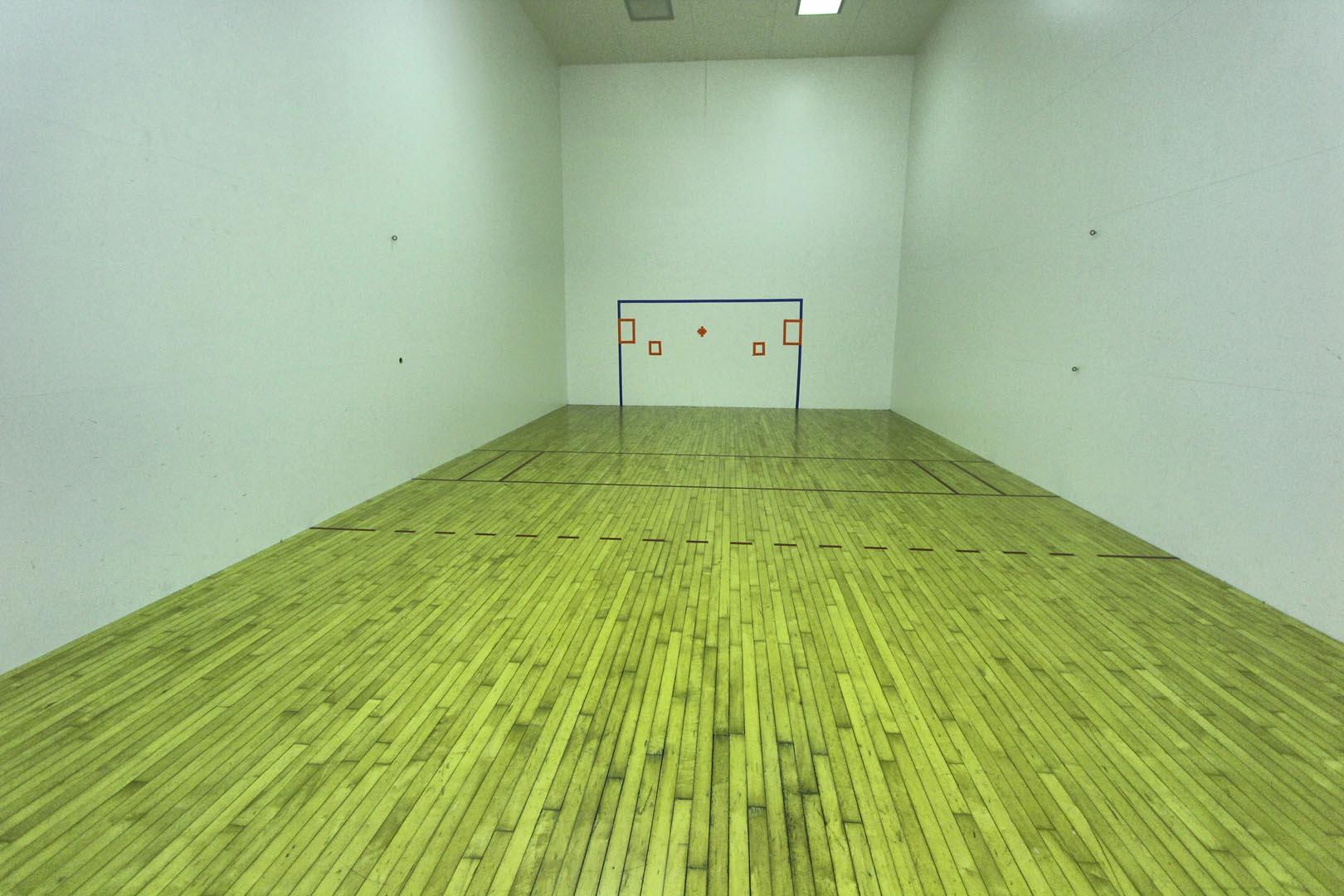 Holly Tree Resort Indoor Raquetball