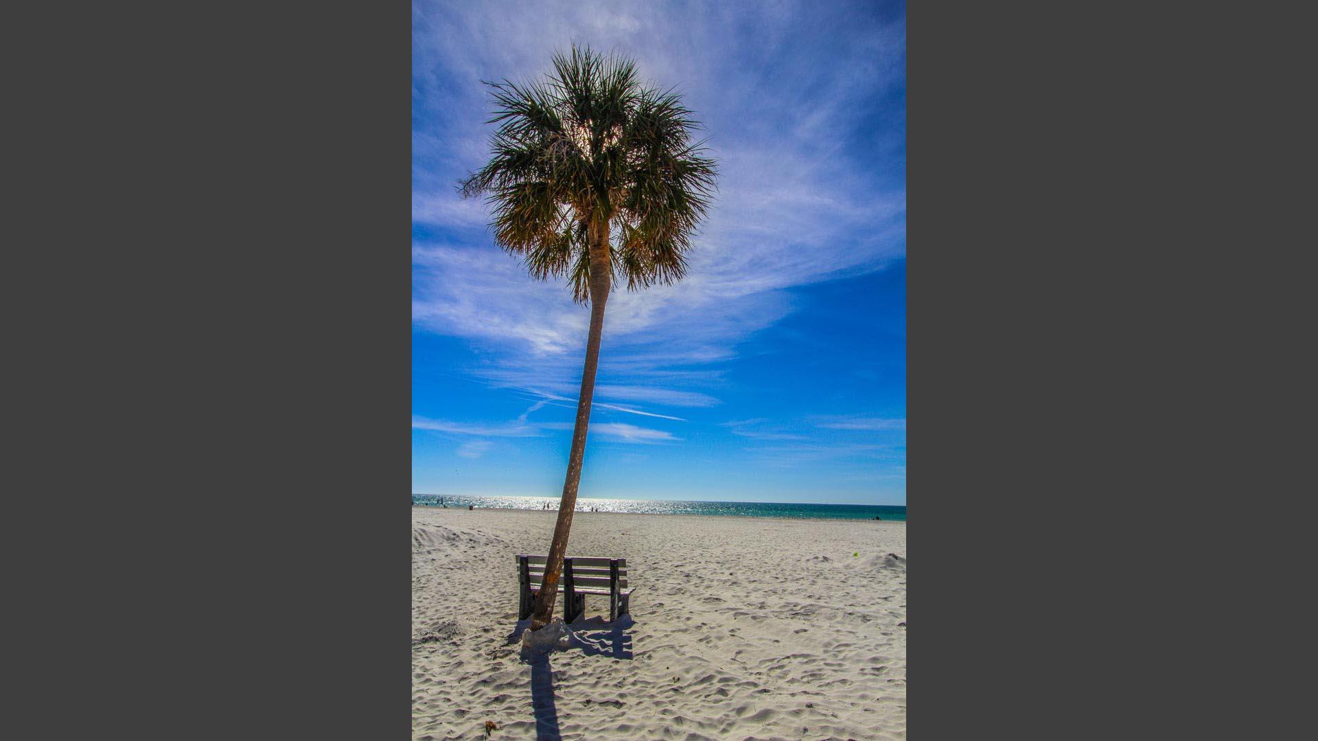 Mariner Beach Club Beach