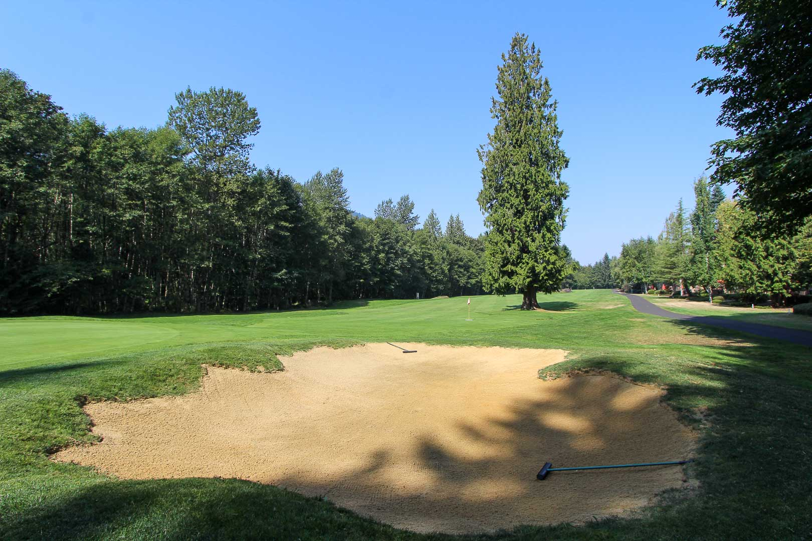 A spacious golf course at VRI's Whispering Woods Resort in Oregon.