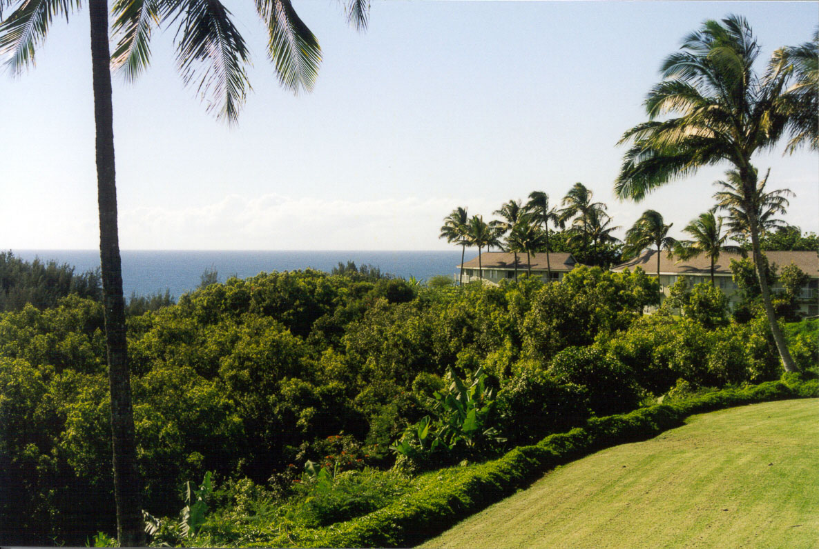 The scenic view from VRI's Alii Kai Resort in Hawaii