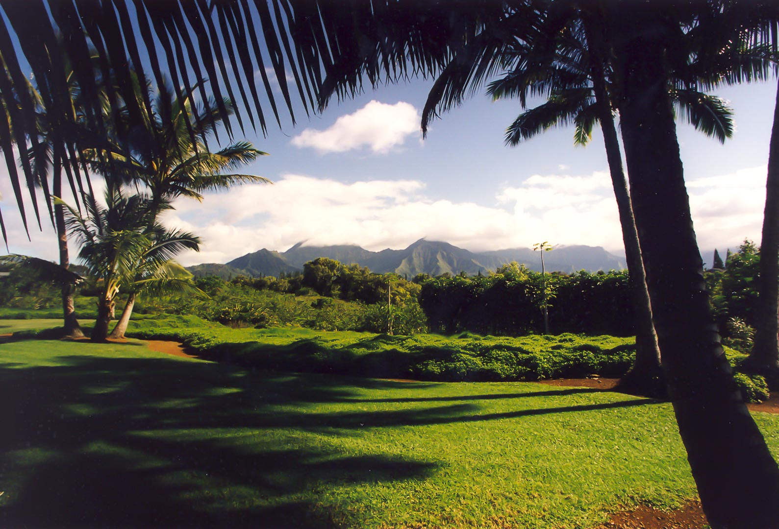 A scenic view from VRI's Alii Kai Resort in Hawaii