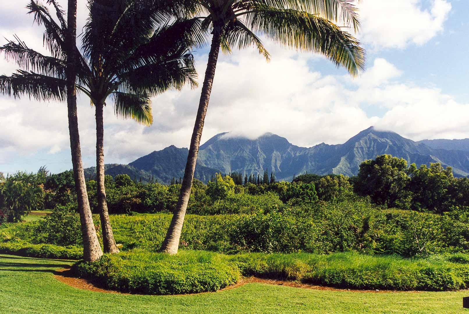 The beautiful view from VRI's Alii Kai Resort in Hawaii