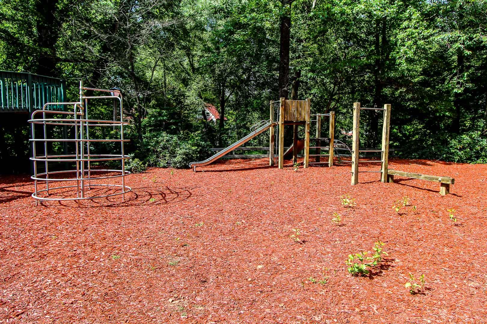 An expansive children's playground at VRI's Alpine Crest Resort in Georgia.
