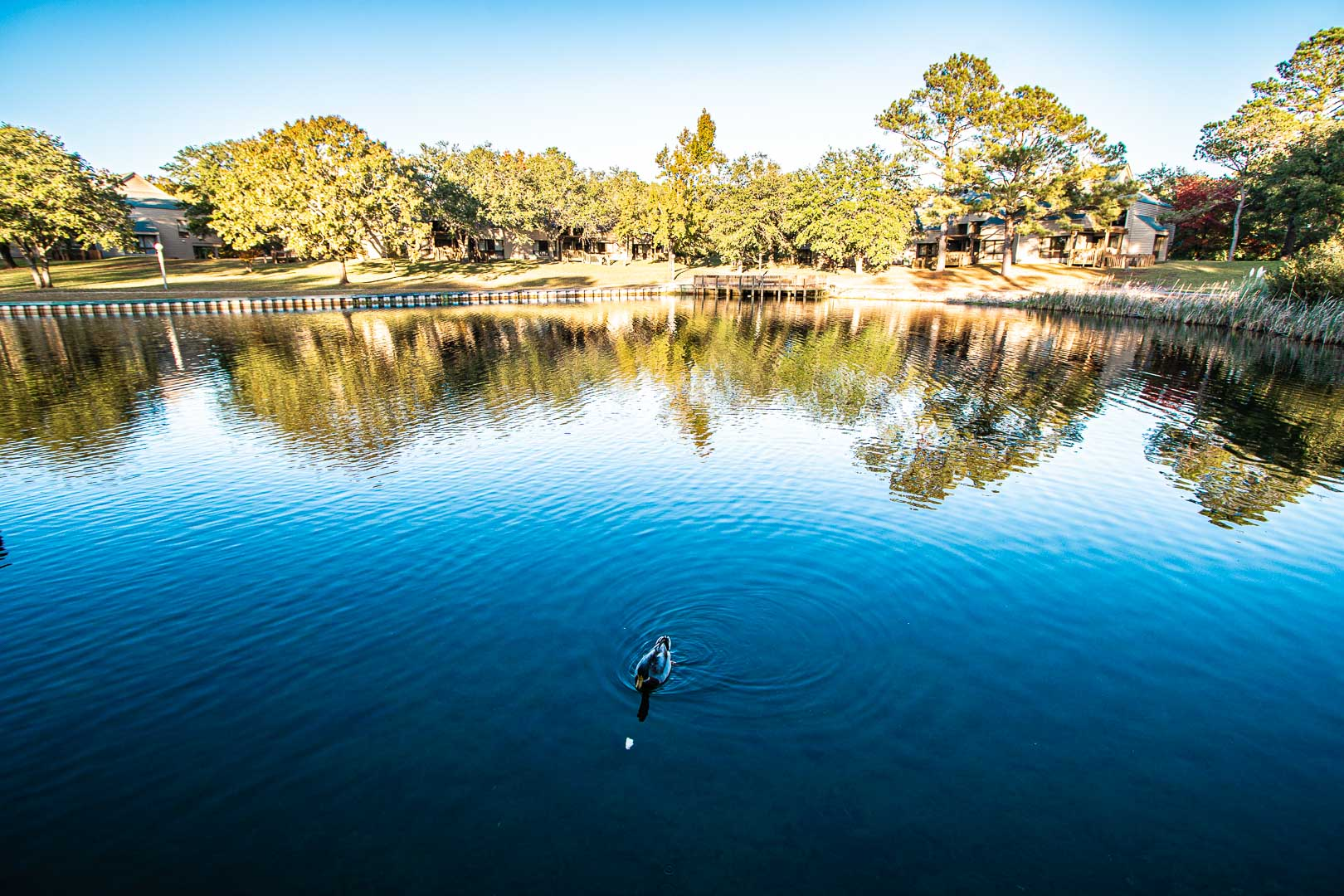 A scenic lake view at VRI's Harbourside II in New Bern, North Carolina.