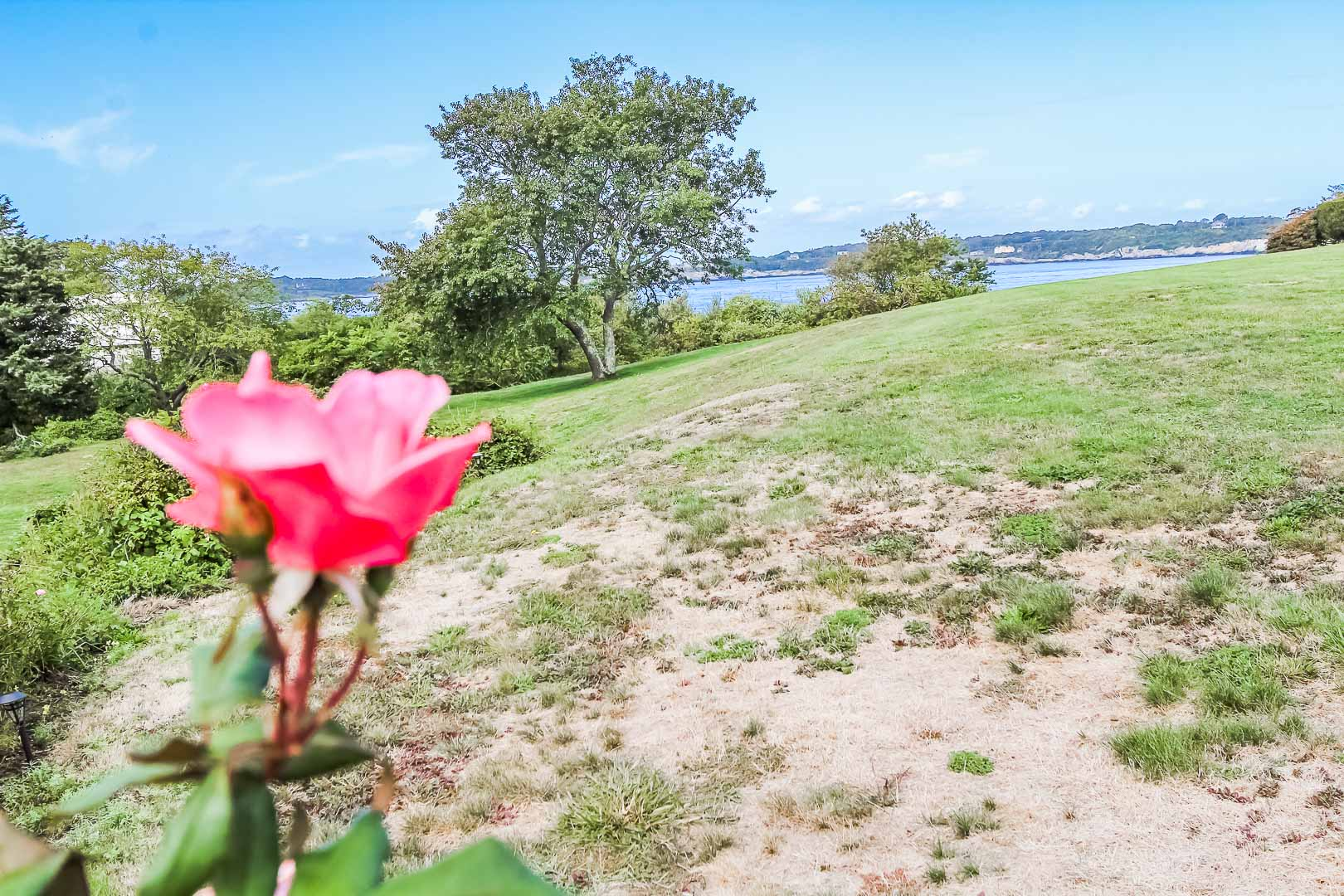 A tranqui view from VRI's Oceancliff Resort in Rhode Island.